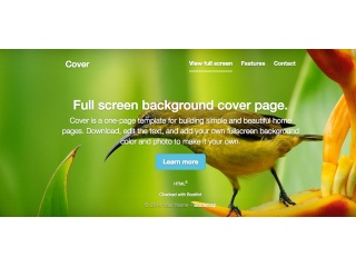 Bootstrap Background Examples