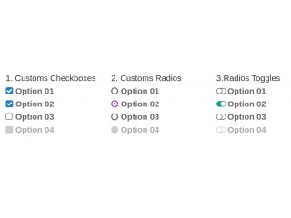 Simple CSS Custom CheckBoxes and Radios