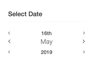 Fast Selection Date Picker