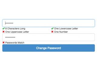 Change Password Form (With Validation)