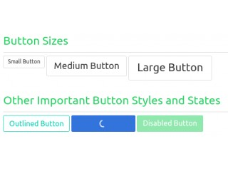 Awesome Button Styles