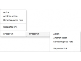 Bootstrap Dropdown Examples