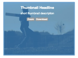 Thumbnail Caption Hover Effect BS 2