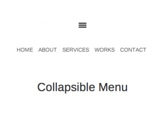Collapsible Menu