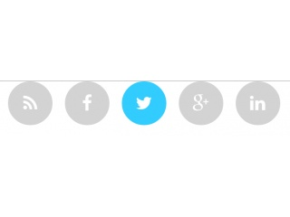 Spinning social icons