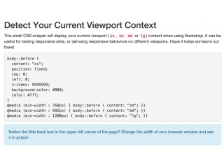 Detect Viewport Context