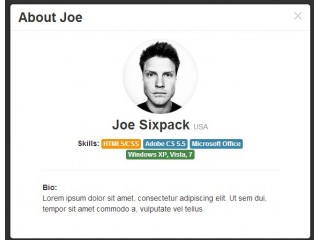 Joe Sixpack About & Profile Modal