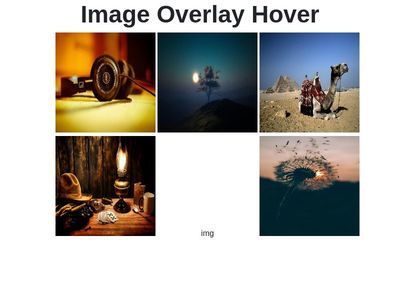 img overlay hover effect