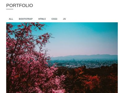 Portfolio Image Gallery With Modal