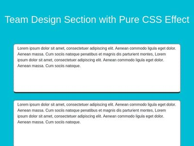 Team Design Section with Pure CSS  on hover Effect