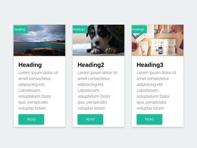 bootstrap material style blog cards
