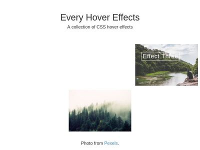 img hover effect