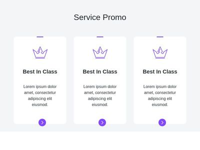 Service Promo Section