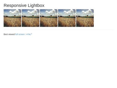 TEST: responsive LightBox
