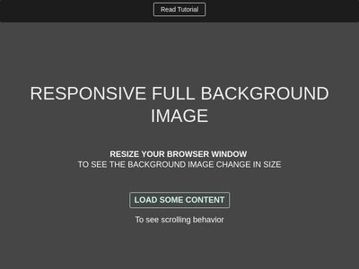RESPONSIVE FULL BACKGROUND IMAGE