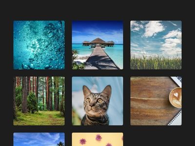 Image Gallery using bootstrap 4