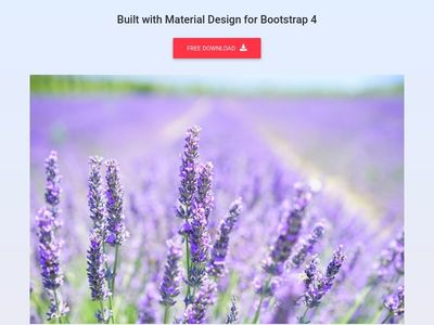 Bootstrap Hover Effects - Material Design & Bootstrap 4