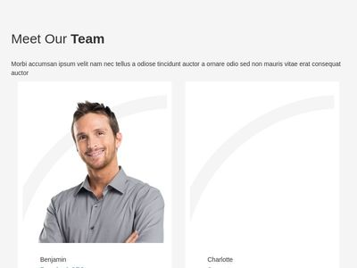 our team page full responsive